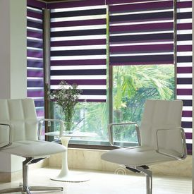 Vision Blinds (Duo)